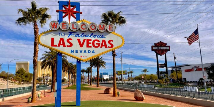 Understanding the Process of Forming an LLC at Nevada